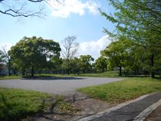 篠崎公園 約20m