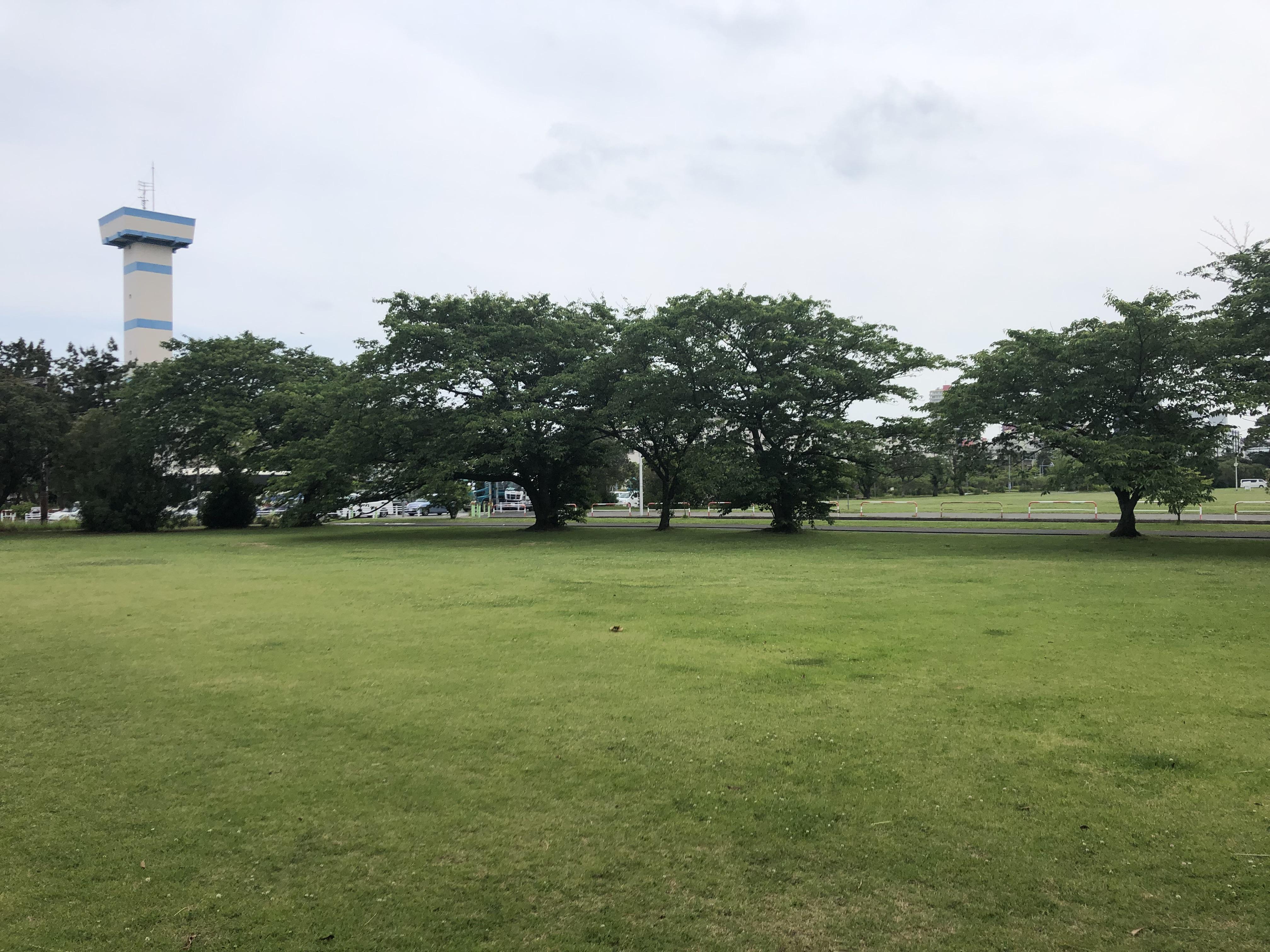 稲岸公園 約600m